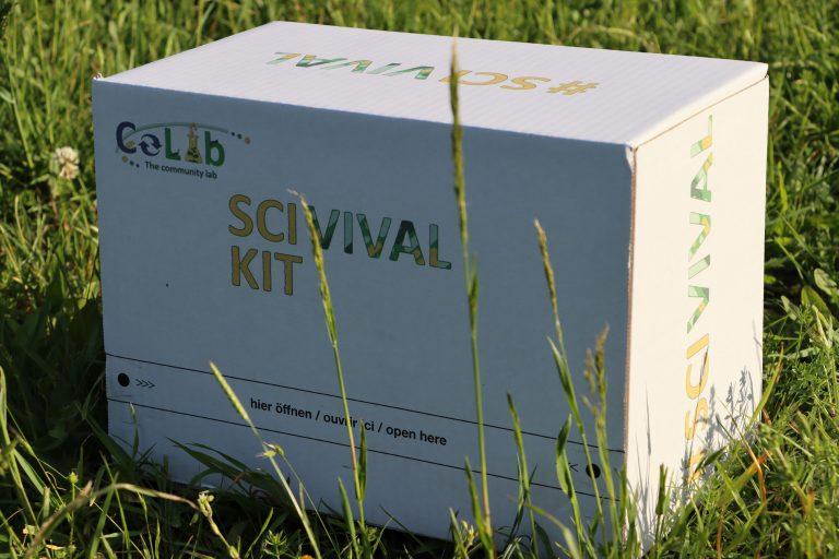 Die Scivival-Box